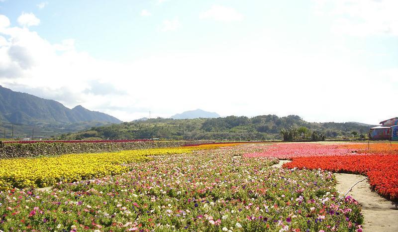 台湾花莲花东纵谷国家风景点图片