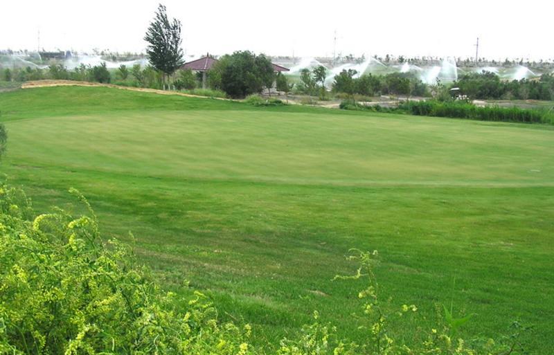 大漠国际高尔夫俱乐部景点图片