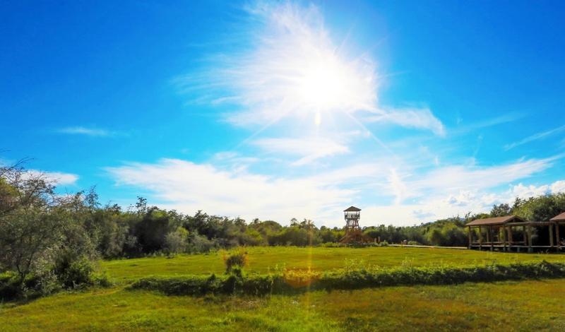 新疆乌什沙棘林湿地公园景点图片