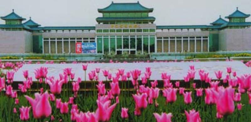 青海省博物馆旅游风景图片