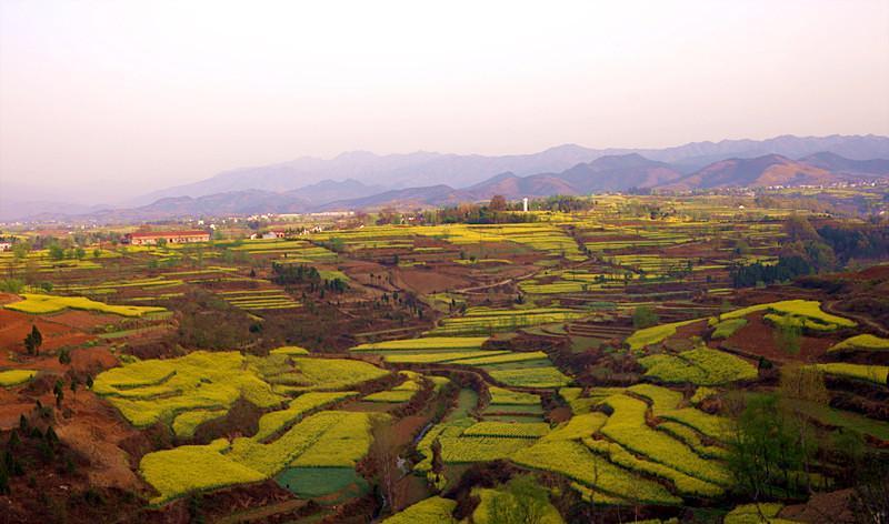 陕西汉中朱鹮国家级自然保护区