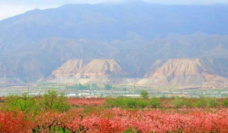 青海民和桃花园林景点图片