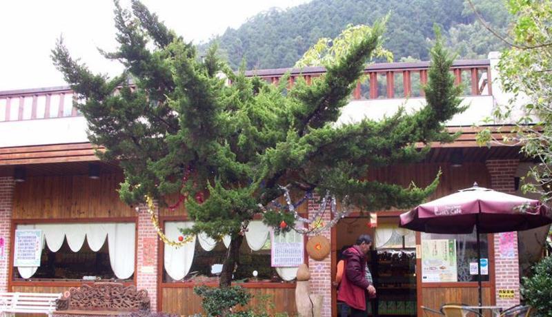 南庄乡桂花园乡村会馆景点图片