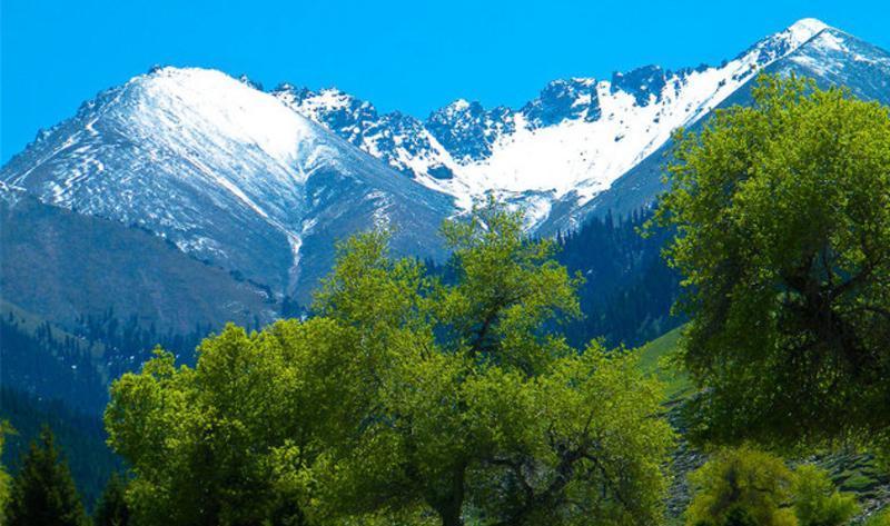 乌苏佛山国家森林公园景点图片