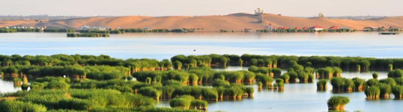宁夏沙湖旅游景点图片