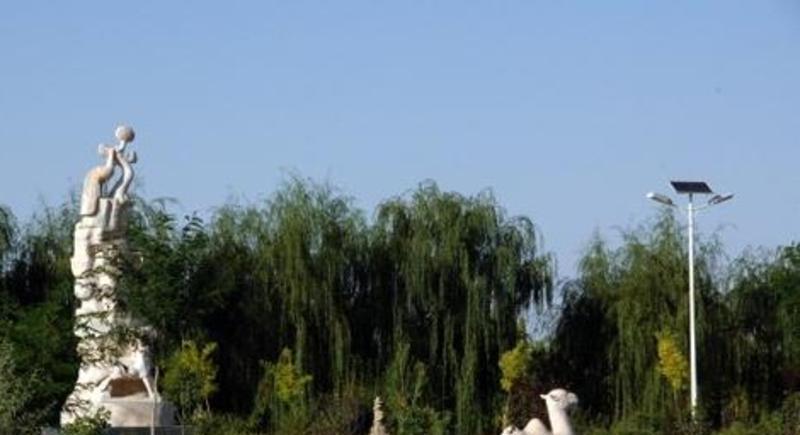 神州荒漠野生动物园景点图片