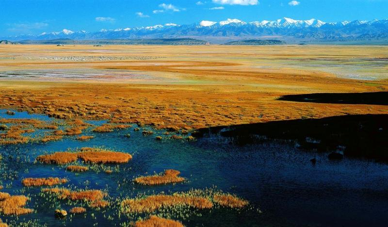 甘肃盐池湾国家级自然保护区景点图片