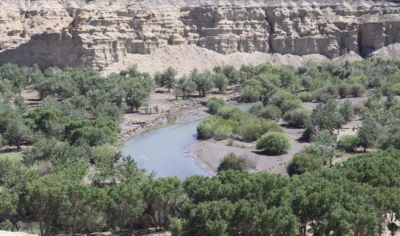 白杨河大峡谷景点图片