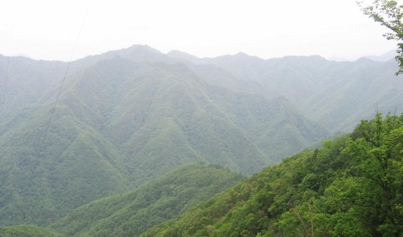 陕西桑园国家级自然保护区