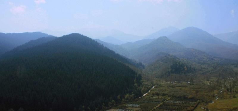 青海峡群寺森林公园景点图片