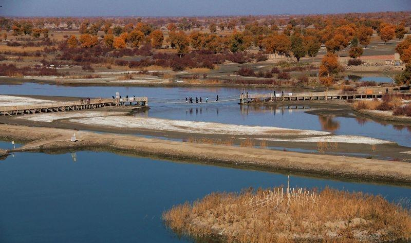 新疆罗布人村寨景点图片