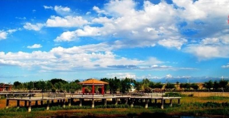 新疆五家渠青格达湖风景点图片
