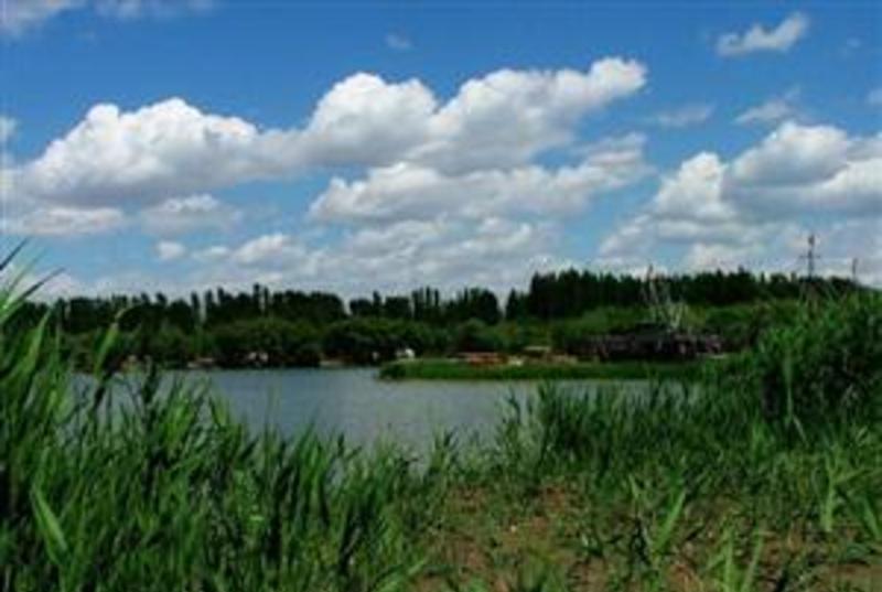 昌吉黑马生态科技园