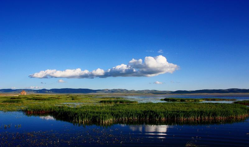 甘肃尕海则岔国家级自然保护区景点图片